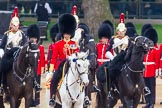 The Colonel's Review 2016. Horse Guards Parade, Westminster, London,  United Kingdom, on 04 June 2016 at 11:05, image #201