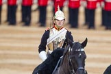The Colonel's Review 2016. Horse Guards Parade, Westminster, London,  United Kingdom, on 04 June 2016 at 11:05, image #204