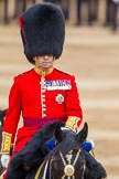 The Colonel's Review 2016. Horse Guards Parade, Westminster, London,  United Kingdom, on 04 June 2016 at 11:06, image #209