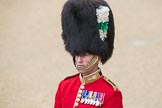 Trooping the Colour 2016. Horse Guards Parade, Westminster, London SW1A, London, United Kingdom, on 11 June 2016 at 09:17, image #8