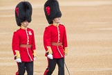 Trooping the Colour 2016. Horse Guards Parade, Westminster, London SW1A, London, United Kingdom, on 11 June 2016 at 10:04, image #60