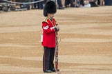 Trooping the Colour 2016. Horse Guards Parade, Westminster, London SW1A, London, United Kingdom, on 11 June 2016 at 10:13, image #84