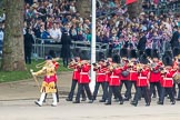 Trooping the Colour 2016. Horse Guards Parade, Westminster, London SW1A, London, United Kingdom, on 11 June 2016 at 10:13, image #85