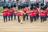 Trooping the Colour 2016. Horse Guards Parade, Westminster, London SW1A, London, United Kingdom, on 11 June 2016 at 10:15, image #91