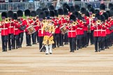 Trooping the Colour 2016. Horse Guards Parade, Westminster, London SW1A, London, United Kingdom, on 11 June 2016 at 10:15, image #92