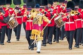Trooping the Colour 2016. Horse Guards Parade, Westminster, London SW1A, London, United Kingdom, on 11 June 2016 at 10:15, image #93