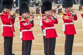 Trooping the Colour 2016. Horse Guards Parade, Westminster, London SW1A, London, United Kingdom, on 11 June 2016 at 10:17, image #98