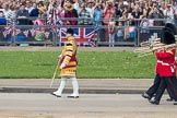 Trooping the Colour 2016. Horse Guards Parade, Westminster, London SW1A, London, United Kingdom, on 11 June 2016 at 10:18, image #103