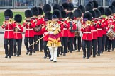 Trooping the Colour 2016. Horse Guards Parade, Westminster, London SW1A, London, United Kingdom, on 11 June 2016 at 10:18, image #104