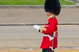 Trooping the Colour 2016. Horse Guards Parade, Westminster, London SW1A, London, United Kingdom, on 11 June 2016 at 10:21, image #113