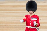 Trooping the Colour 2016. Horse Guards Parade, Westminster, London SW1A, London, United Kingdom, on 11 June 2016 at 10:22, image #114