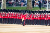 Trooping the Colour 2016. Horse Guards Parade, Westminster, London SW1A, London, United Kingdom, on 11 June 2016 at 10:28, image #135
