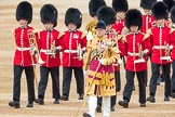 Trooping the Colour 2016. Horse Guards Parade, Westminster, London SW1A, London, United Kingdom, on 11 June 2016 at 10:28, image #136