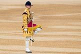 Trooping the Colour 2016. Horse Guards Parade, Westminster, London SW1A, London, United Kingdom, on 11 June 2016 at 10:31, image #149