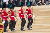 Trooping the Colour 2016. Horse Guards Parade, Westminster, London SW1A, London, United Kingdom, on 11 June 2016 at 10:31, image #151