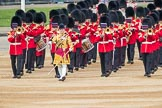 Trooping the Colour 2016. Horse Guards Parade, Westminster, London SW1A, London, United Kingdom, on 11 June 2016 at 10:32, image #154
