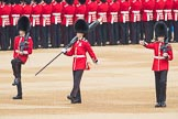Trooping the Colour 2016. Horse Guards Parade, Westminster, London SW1A, London, United Kingdom, on 11 June 2016 at 10:32, image #156