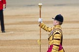 Trooping the Colour 2016. Horse Guards Parade, Westminster, London SW1A, London, United Kingdom, on 11 June 2016 at 10:32, image #158