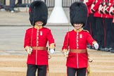 Trooping the Colour 2016. Horse Guards Parade, Westminster, London SW1A, London, United Kingdom, on 11 June 2016 at 10:33, image #160