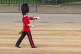 Trooping the Colour 2016. Horse Guards Parade, Westminster, London SW1A, London, United Kingdom, on 11 June 2016 at 10:34, image #163