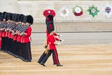 Trooping the Colour 2016. Horse Guards Parade, Westminster, London SW1A, London, United Kingdom, on 11 June 2016 at 10:34, image #164