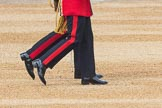 Trooping the Colour 2016. Horse Guards Parade, Westminster, London SW1A, London, United Kingdom, on 11 June 2016 at 10:34, image #165