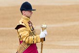 Trooping the Colour 2016. Horse Guards Parade, Westminster, London SW1A, London, United Kingdom, on 11 June 2016 at 10:34, image #167