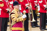 Trooping the Colour 2016. Horse Guards Parade, Westminster, London SW1A, London, United Kingdom, on 11 June 2016 at 10:34, image #168