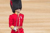 Trooping the Colour 2016. Horse Guards Parade, Westminster, London SW1A, London, United Kingdom, on 11 June 2016 at 10:34, image #172
