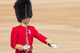 Trooping the Colour 2016. Horse Guards Parade, Westminster, London SW1A, London, United Kingdom, on 11 June 2016 at 10:34, image #173