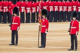 Trooping the Colour 2016. Horse Guards Parade, Westminster, London SW1A, London, United Kingdom, on 11 June 2016 at 10:35, image #174