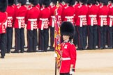 Trooping the Colour 2016. Horse Guards Parade, Westminster, London SW1A, London, United Kingdom, on 11 June 2016 at 10:35, image #175