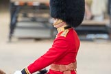 Trooping the Colour 2016. Horse Guards Parade, Westminster, London SW1A, London, United Kingdom, on 11 June 2016 at 10:36, image #178