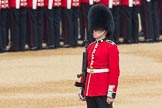 Trooping the Colour 2016. Horse Guards Parade, Westminster, London SW1A, London, United Kingdom, on 11 June 2016 at 10:36, image #179