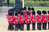 Trooping the Colour 2016. Horse Guards Parade, Westminster, London SW1A, London, United Kingdom, on 11 June 2016 at 10:37, image #182