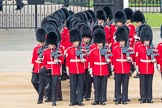 Trooping the Colour 2016. Horse Guards Parade, Westminster, London SW1A, London, United Kingdom, on 11 June 2016 at 10:37, image #183