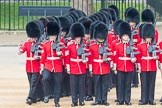 Trooping the Colour 2016. Horse Guards Parade, Westminster, London SW1A, London, United Kingdom, on 11 June 2016 at 10:37, image #184