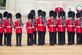 Trooping the Colour 2016. Horse Guards Parade, Westminster, London SW1A, London, United Kingdom, on 11 June 2016 at 10:37, image #186