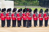 Trooping the Colour 2016. Horse Guards Parade, Westminster, London SW1A, London, United Kingdom, on 11 June 2016 at 10:37, image #187