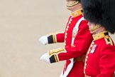 Trooping the Colour 2016. Horse Guards Parade, Westminster, London SW1A, London, United Kingdom, on 11 June 2016 at 10:38, image #188