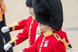 Trooping the Colour 2016. Horse Guards Parade, Westminster, London SW1A, London, United Kingdom, on 11 June 2016 at 10:38, image #189