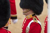 Trooping the Colour 2016. Horse Guards Parade, Westminster, London SW1A, London, United Kingdom, on 11 June 2016 at 10:38, image #190
