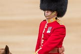 Trooping the Colour 2016. Horse Guards Parade, Westminster, London SW1A, London, United Kingdom, on 11 June 2016 at 10:39, image #195