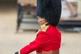 Trooping the Colour 2016. Horse Guards Parade, Westminster, London SW1A, London, United Kingdom, on 11 June 2016 at 10:40, image #196