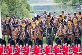 Trooping the Colour 2016. Horse Guards Parade, Westminster, London SW1A, London, United Kingdom, on 11 June 2016 at 10:40, image #198