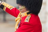 Trooping the Colour 2016. Horse Guards Parade, Westminster, London SW1A, London, United Kingdom, on 11 June 2016 at 10:40, image #199