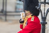 Trooping the Colour 2016. Horse Guards Parade, Westminster, London SW1A, London, United Kingdom, on 11 June 2016 at 10:40, image #200