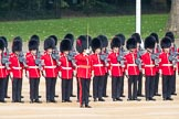 Trooping the Colour 2016. Horse Guards Parade, Westminster, London SW1A, London, United Kingdom, on 11 June 2016 at 10:42, image #205