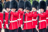 Trooping the Colour 2016. Horse Guards Parade, Westminster, London SW1A, London, United Kingdom, on 11 June 2016 at 10:43, image #210