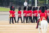 Trooping the Colour 2016. Horse Guards Parade, Westminster, London SW1A, London, United Kingdom, on 11 June 2016 at 10:44, image #215